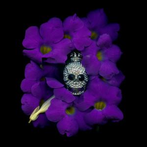 Angki-Purbandono-King-of-Purple-100x100
